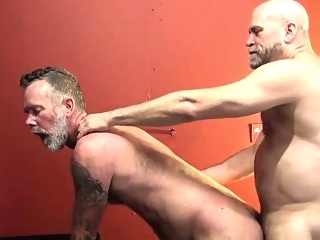 Barebacked mature bear bears (gay) blowjob (gay) daddies (gay)