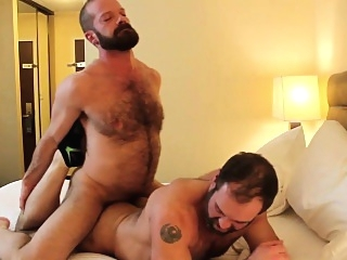 MuscleBull Bareback Fucks Topher Phoenix bears (gay) gays (gay) hd gays (gay)
