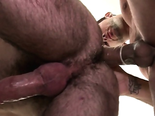 Mature hunk assfucking bear after anal fingering bears (gay) blowjob (gay) gays (gay)